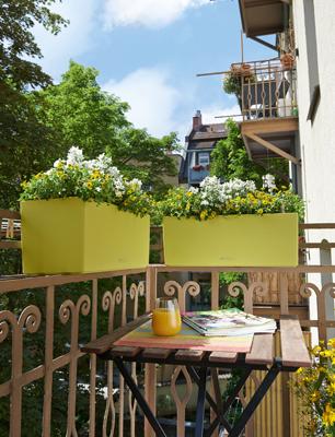 Deux jardinières de LECHUZA. BALCONERA Color 50 en vert pistache