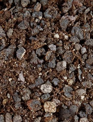 Le substrat de plantation LECHUZA TERRAPON