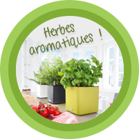 Les herbs aromatiques